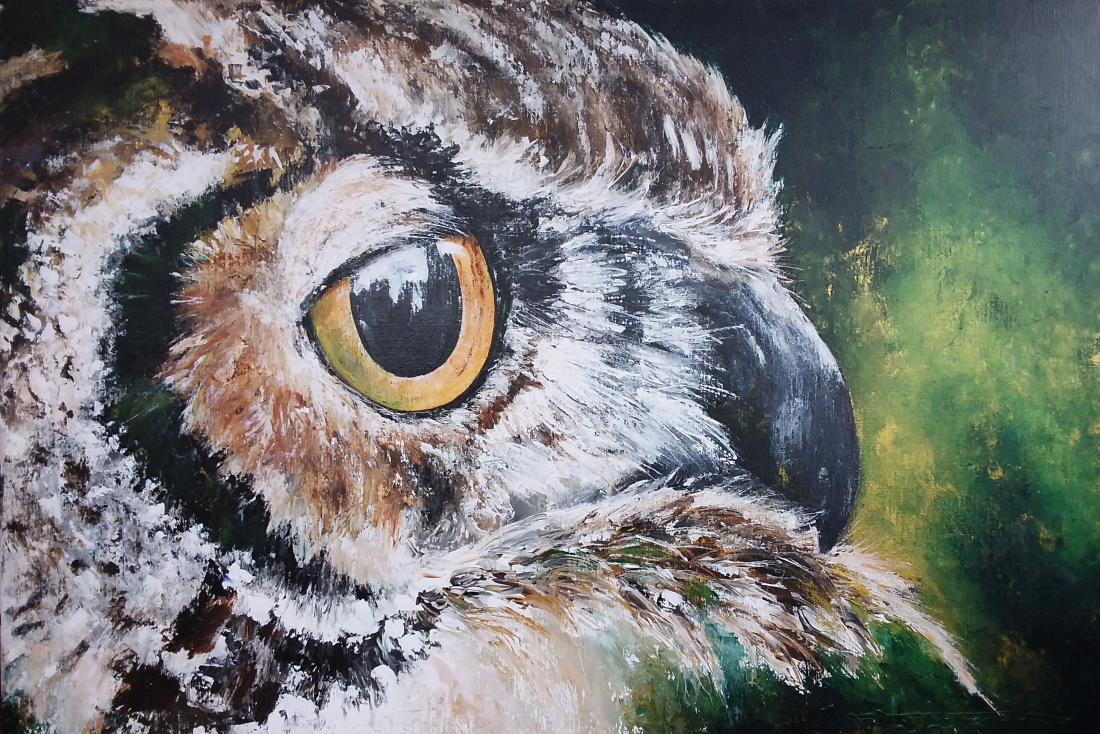 """Owl Expression"" 80x120 available"