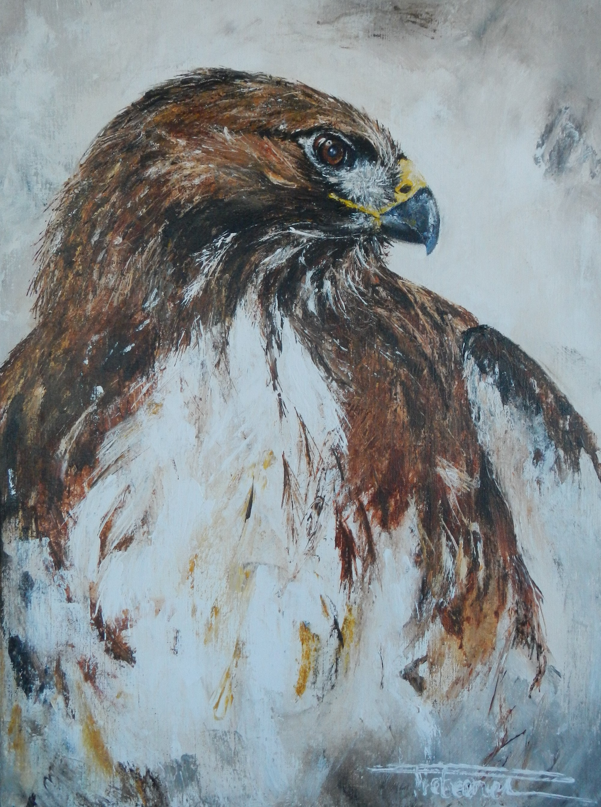 """Redtail Hawk"" 80x60 available"